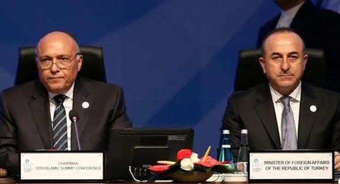 Dışişleri Bakanı Mevlüt Çavuşoğlu Mısırlı mevkiidaşı ile görüştü