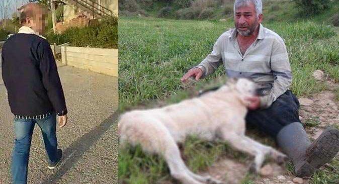 Gözünün önünde köpeğe vurulan adam gözyaşlarına boğuldu