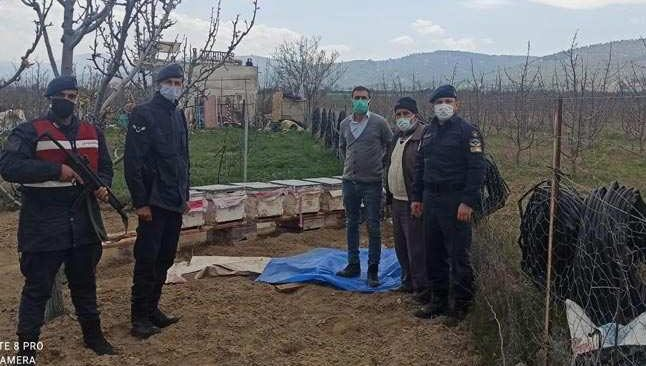 Antalya'da arı kovanı hırsızı yakalandı