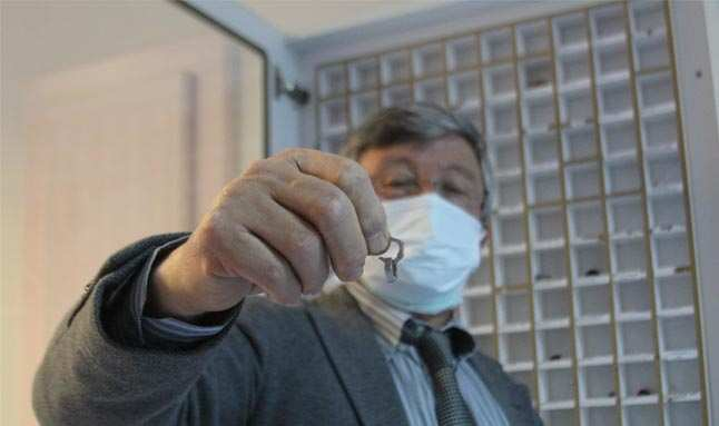 Cerrahın çocukları ölümle burun buruna getiren sıra dışı yabancı cisimlerden koleksiyon yaptı