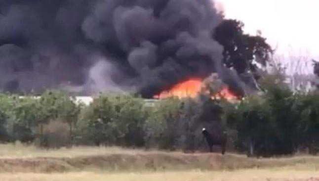 Antalya'da kurt ve böceklerin bulunduğu bölgede yangın