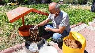 Konyaaltı Belediyesi sokak hayvanlarını yalnız bırakmadı