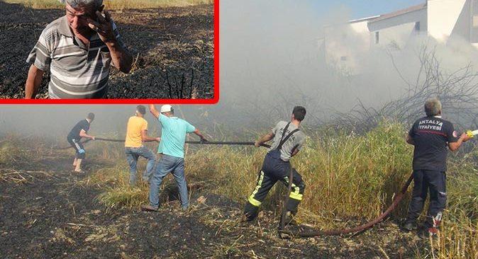 Buğday tarlasında yangın çıktı! Süleyman Köse gözyaşlarına boğuldu