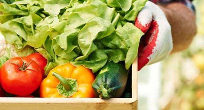 Nisan ayında Antalya hallerindeki domates, sebze ve meyve endeksi açıklandı