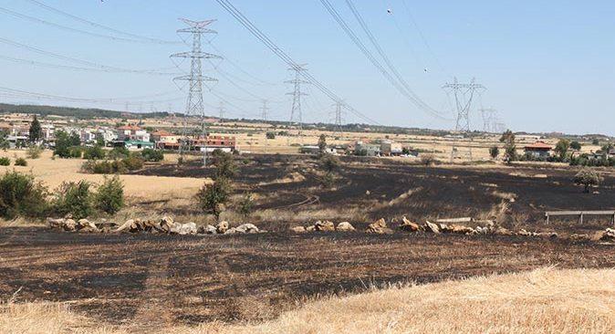 Antalya'da çıkan yangın buğday tarlasını küle çevirdi