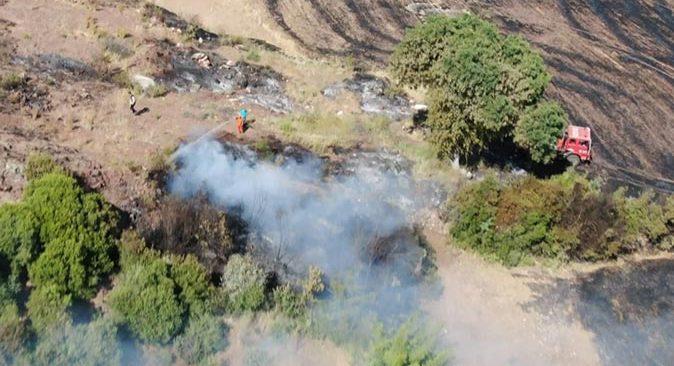 Antalya'da ormanlık alanda yangın! Her yer küle döndü