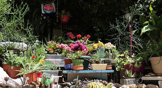 En Güzel Balkon Bahçe yarışmasının kazananları belli oldu
