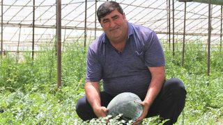 Kardeşini kanserden kaybeden Antalyalı çiftçi İrfan Ateş doğal karpuz üretti
