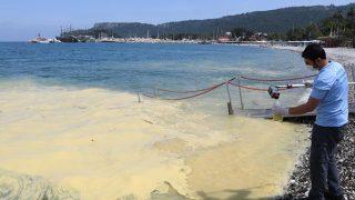 Antalya'da görülen denizdeki sarı tabakanın nedeni belli oldu