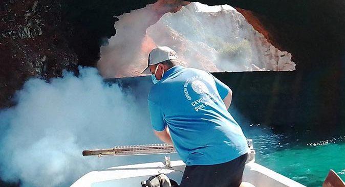 Antalya'da sinekle mücadele çalışmaları sürüyor