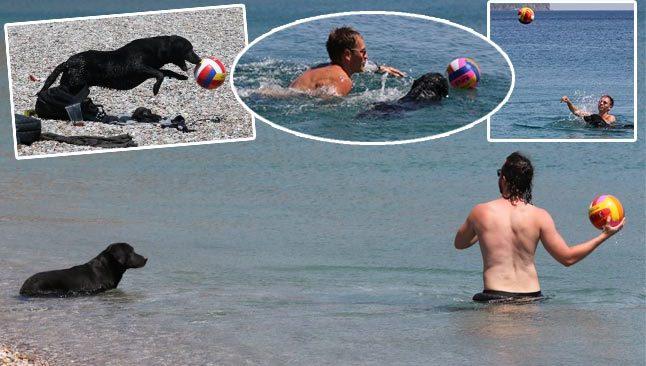 Antalya'da sokak köpeği turistleri hayran bıraktı