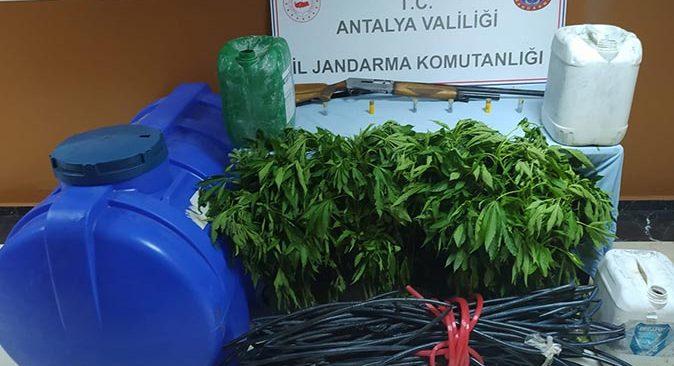 Serik'te ormanlık alana uyuşturucu baskını! Şüpheli tutuklandı