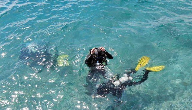 Antalya'da 'lokum'a kurtarma operasyonu