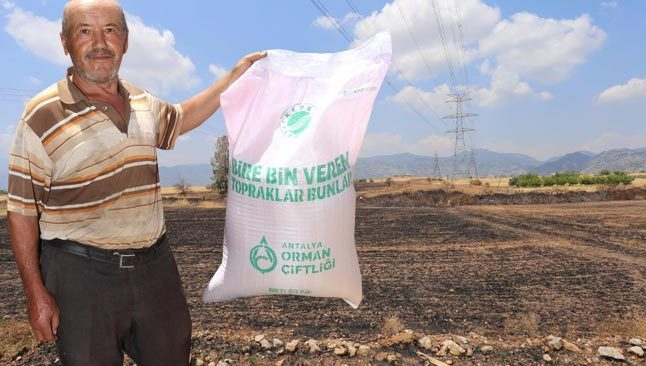 Antalya'da tarlaları yanan çiftçilere tohumluk buğdayları dağıtıldı
