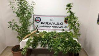 Antalya'da operasyon! Suçüstü yakalandı