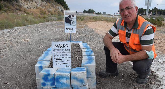 Cemal Kaya ölen köpeği için mezar yaptırdı