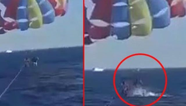 Denizde korkunç anlar! Köpek balığı sudan çıkıp paraşütteki adamın bacağından parça kopardı