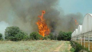Antalya'da mağazadaki yangın tarlalara sıçradı! Ekipler seferber oldu