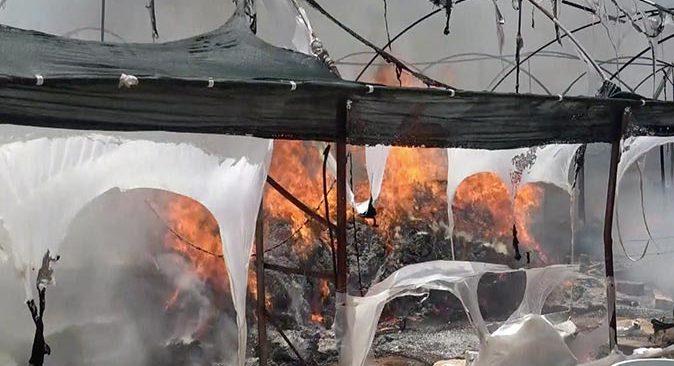 Antalya'da serada yangın! Süs bitkileri kullanılmaz hale geldi