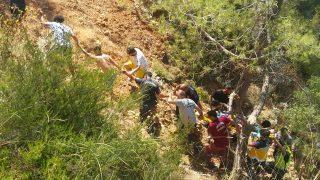 Antalya araç uçuruma yuvarlandı! Yaralılar insan zinciri yardımıyla çıkarıldı...