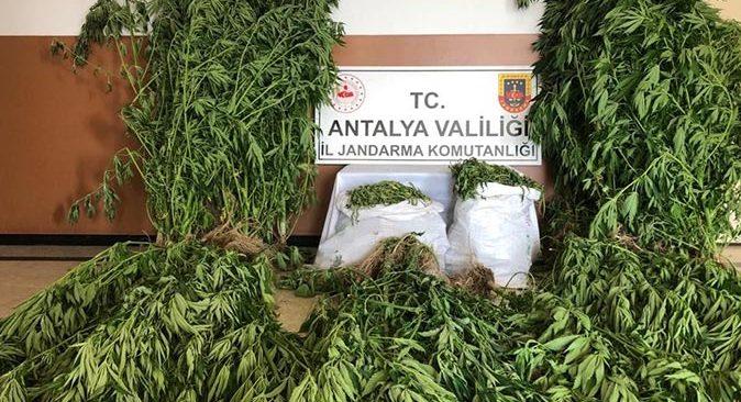 Antalya'da 21 kilo 300 gram kubar esrar ele geçirildi
