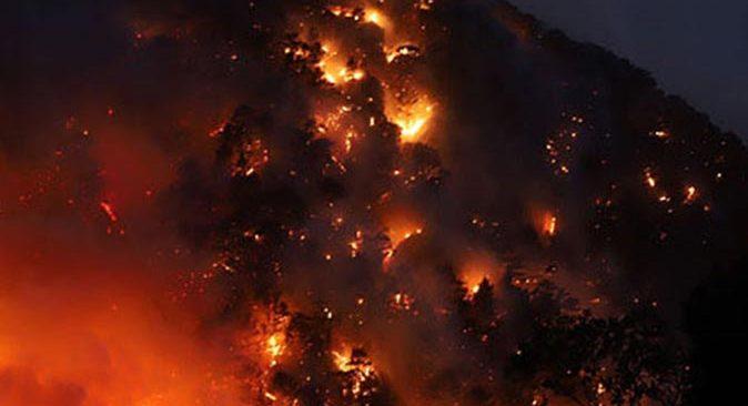 Bakan Pakdemirli duyurdu! 92 yangın kontrol altına alındı