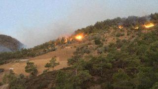 Gazipaşa'da 3 farklı noktada orman yangını çıktı