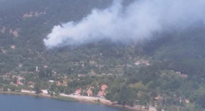 Son dakika.... İzmir'de orman yangını! Ekipler seferber oldu