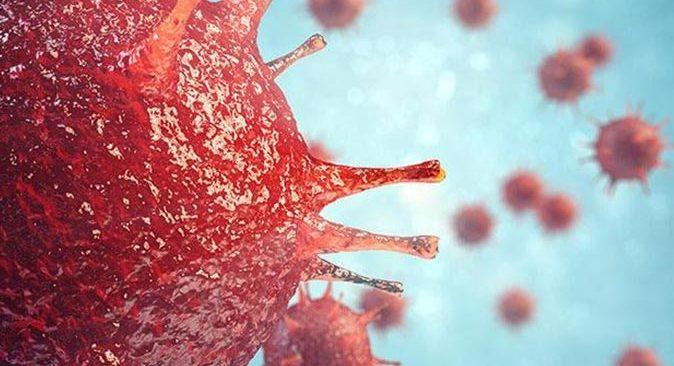 ABD'de Monkeypox virüsü alarmı
