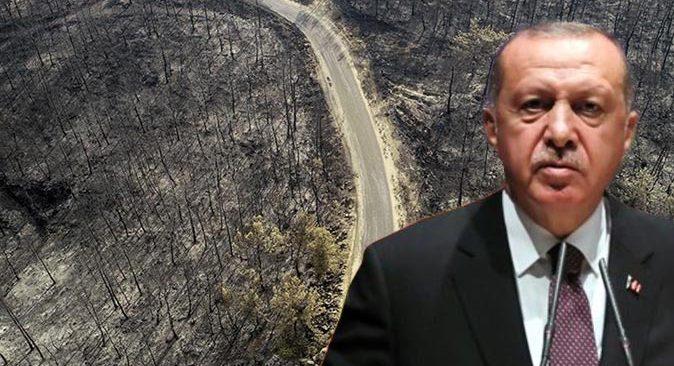 Antalya, Muğla, Mersin, Adana ve Osmaniye'de orman yangınlarından etkilenen alanlar