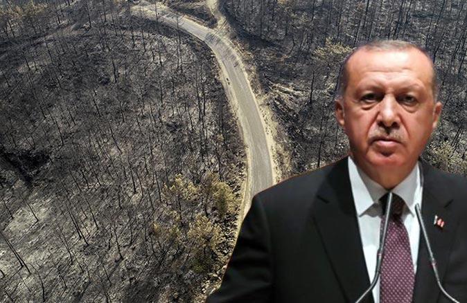 """Antalya, Muğla, Mersin, Adana ve Osmaniye'de orman yangınlarından etkilenen alanlar """"Genel Hayata Etkili Afet Bölgesi"""" ilan edildi"""