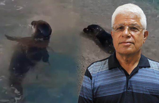Prof. Dr. Mehmet Gökoğlu: Akdeniz foklarına yaklaşmayın
