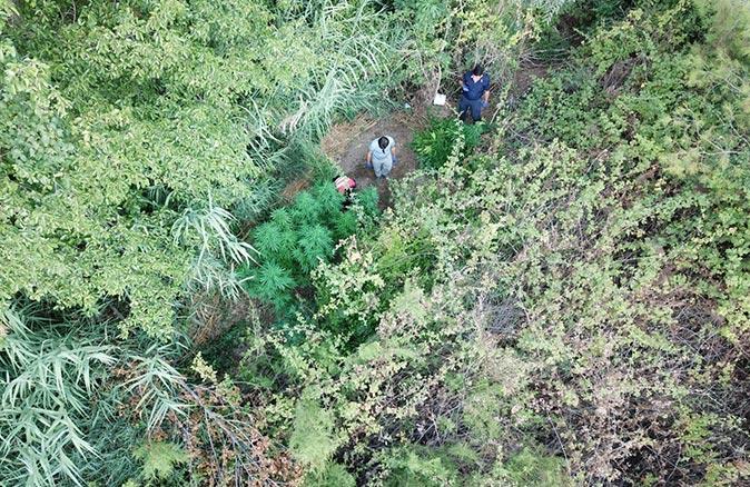 Gazipaşa'da uyuşturucu operasyonu! Gözaltına alındı