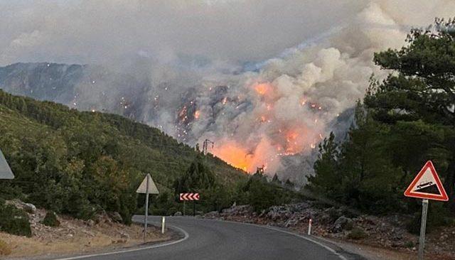 Gündoğmuş'taki orman yangınında bir mahalle tahliye edildi