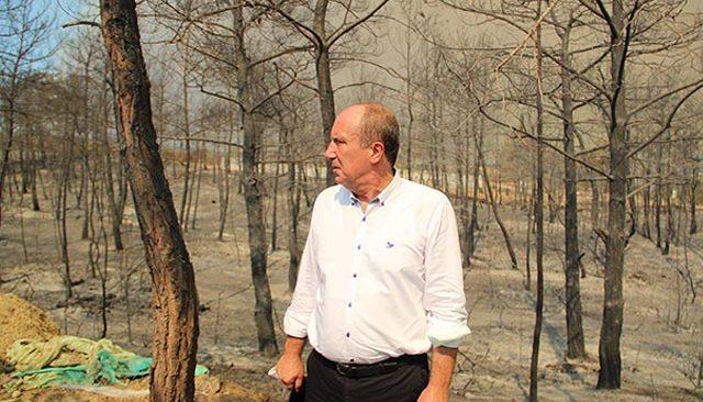 Muharrem İnce, Antalya'da yangın bölgesinde