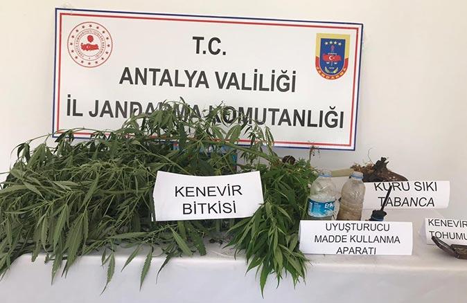 Antalya'da uyuşturucu operasyonu! Hepsi aramada ele geçirildi
