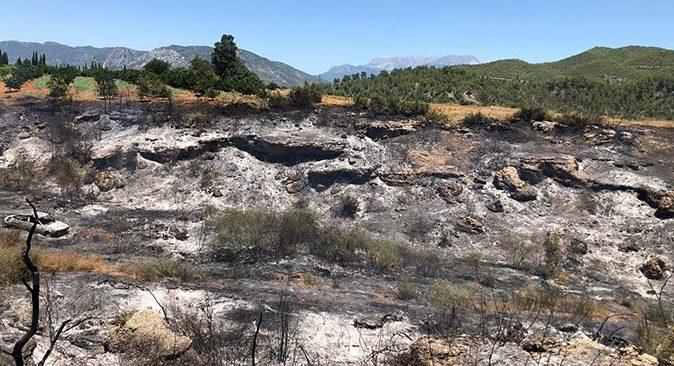 Antalya'da otomobildeki yangın ağaçlara sıçradı!
