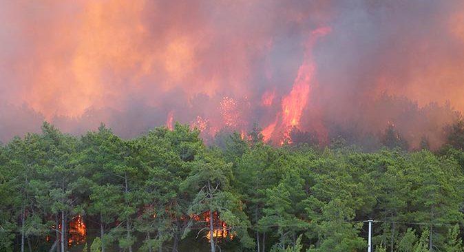 Manavgat'ta orman yangını devam ediyor! Alevler her yeri sardı
