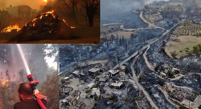 Manavgat'taki orman yangınından yürek yakan kareler