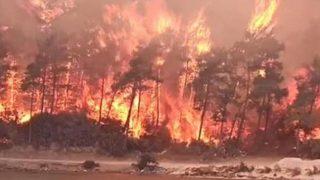 Bodrum'da yangın kabusu büyüyor! Oteller tahliye ediliyor