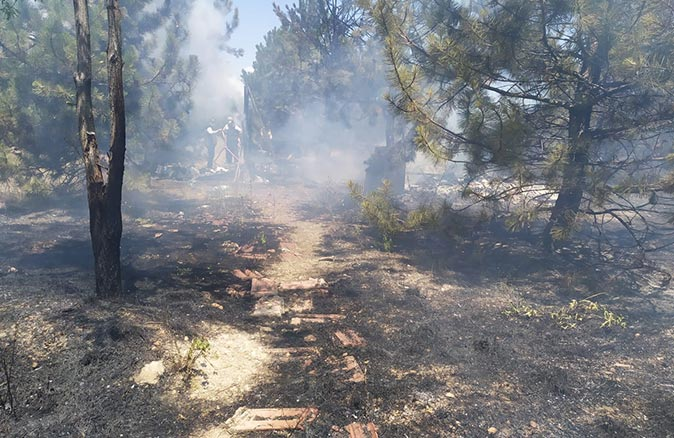 Atatürk Orman Çiftliği'nde yangın! Gözaltına alındı