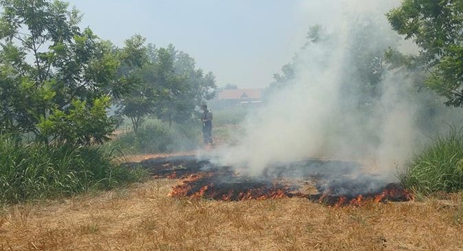 Manavgat'ta makilik alan alev alev yandı