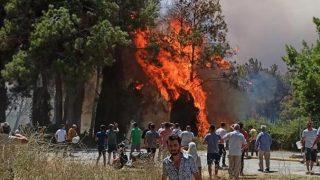 Manavgat'taki yangın kaza mı, sabotaj mı?