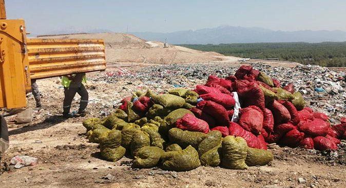 Antalya'da baskın! Tam 4 ton ele geçirildi