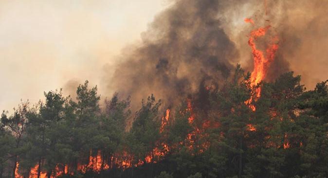 Son dakika...  Alanya'da iki ayrı noktada orman yangını çıktı