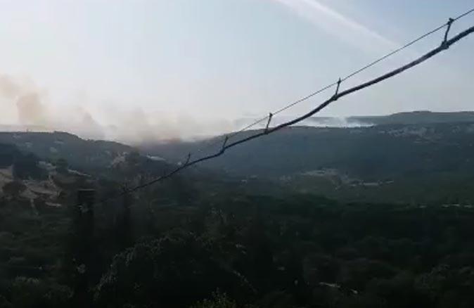 Son dakika... Balıkesir'in Savaştepe ilçesinde orman yangını çıktı