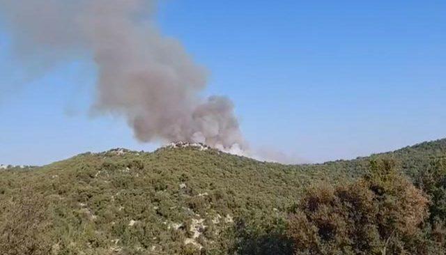 Son dakika! Demre'de de orman yangını çıktı