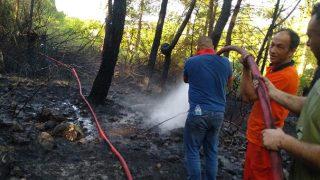 Kemer'de orman yangını! Vatandaşlar ekiplere yardım için seferber oldu