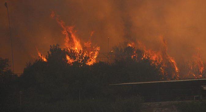 Milas'taki yangın hızla ilerliyor