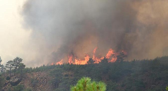 Son dakika.... Köyceğiz'de yeniden orman yangını çıktı